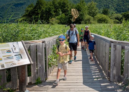 Sentier pédagogique de la réserve naturelle du Bout-du-Lac