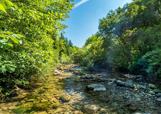 Rivière La Filière