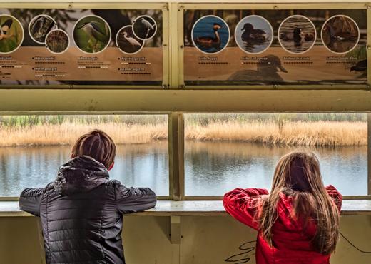 Les étangs de Crosagny depuis l'observatoire ornithologique