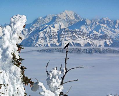Le Mont Blanc depuis le Semnoz
