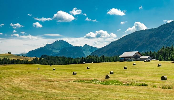 Alpages au Plateau des Glières