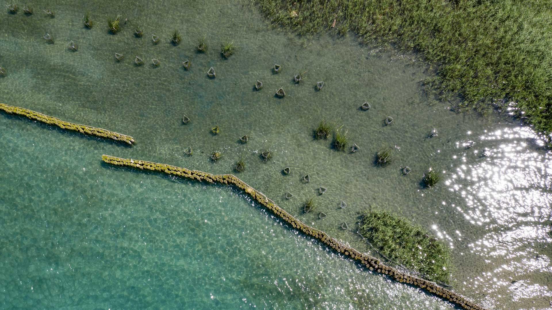 Vue aérienne de la Réserve Naturelle du Bout du Lac