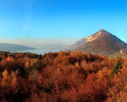 Lac et forêt en automne